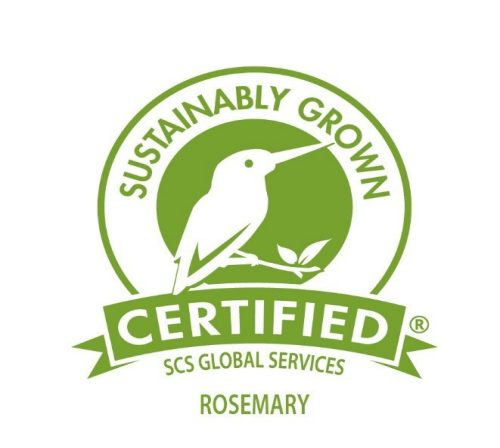 Sustainably Grown Certified Rosemary