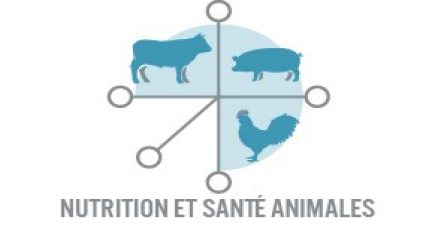 Animal Nutrition and Health Market